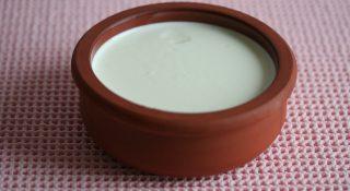 ev yoğurdu ne kadar besleyici?