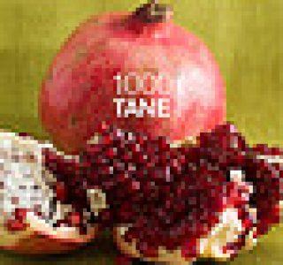 Yemek.Name Kasım 2008 sayısı